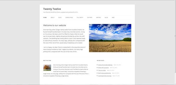 Photography_websites_free_blog_themes_twenty-twelve-wordpress, blogsitestudio.com