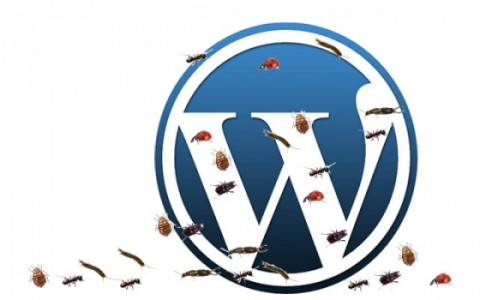 WordPress 3.6 Bugs Get Squashed
