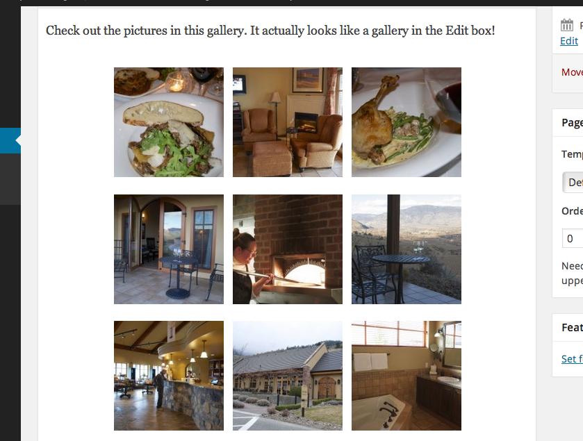 wordpress 3.9 gallery