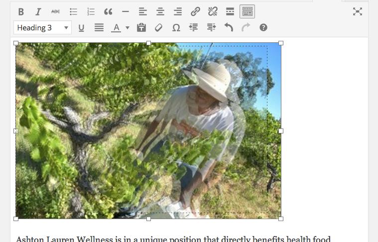 wordpress 3.9 resize