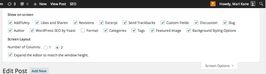 basic wordpress tips screen options, http://blogsitestudio.com/5-basic-wordpress-tips-remember-forever/