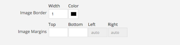 advanced image styles WordPress Photo Plugins