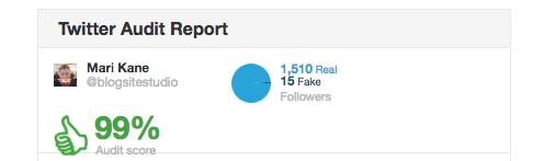 blogsite twitter audit
