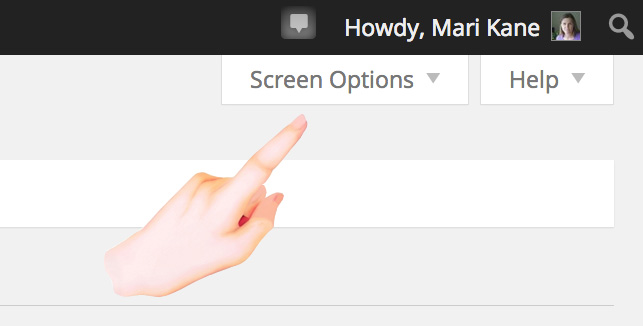 How to Use your WordPress Screen Options