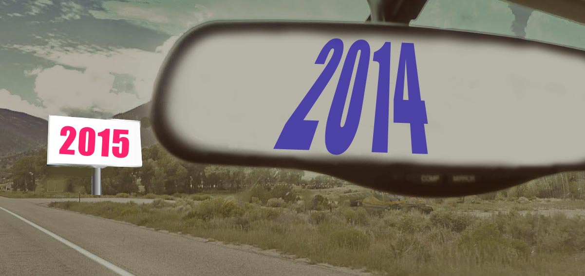 What Expert Bloggers Saw in 2014 and Predict for 2015