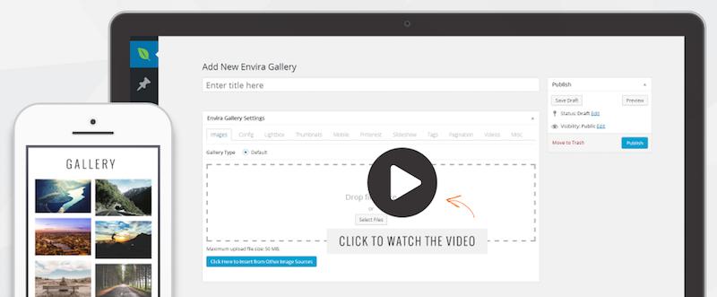 envira gallery WordPress Photo Plugins