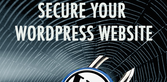 Secure-your-WordPress-Website-700 too