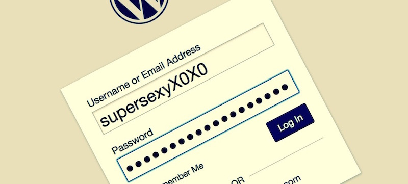 protect your wordpress username
